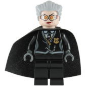 Lego Figurer Harry Potter Madame Hooch 2010